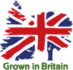 grown in britian-logo